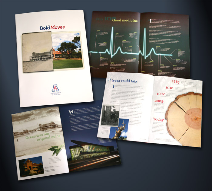 University of Arizona, Bold Moves brochure design